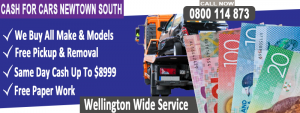 Newtown south cash For Cars Windy City wreckers